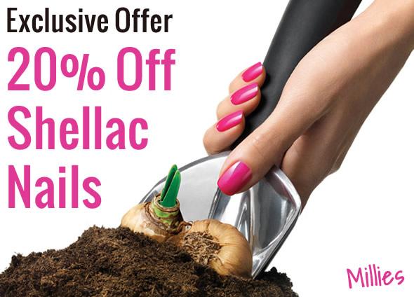 20% Off Shellac Nails