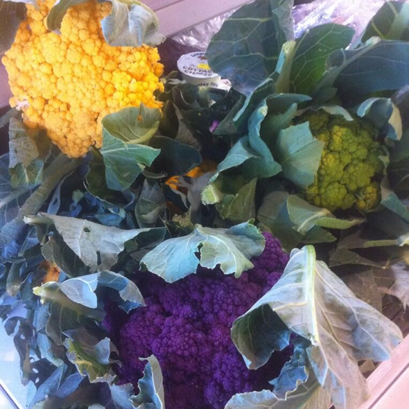 Colourful Cauliflower Leeds
